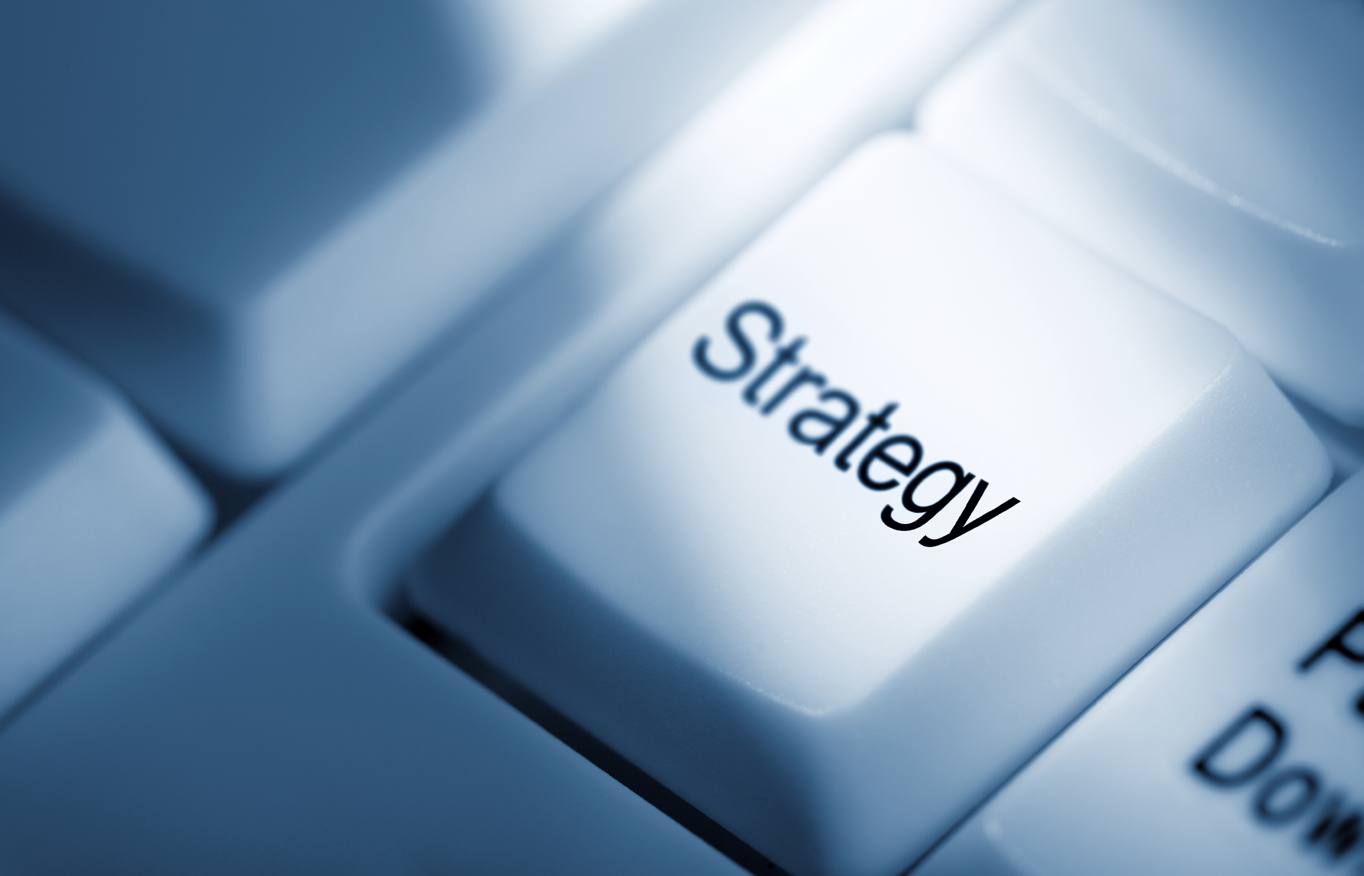 skills and talent strategy the key to global